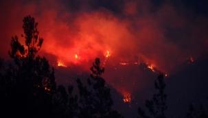 Bakan Pakdemirli duyurdu! Hatay'daki yangın kontrol altına alındı