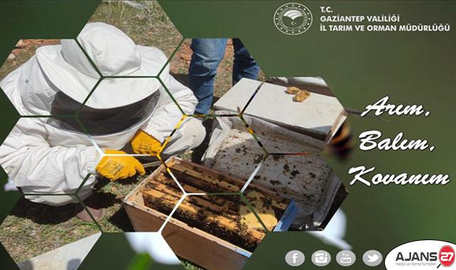 """""""Arım, Balım, Kovanım"""" projesi kapsamında üreticilerimize arılı kovan dağıtımı yapıldı"""