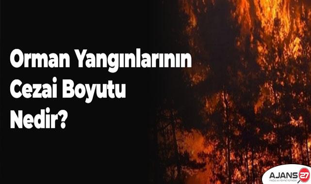 Orman Yangınlarının cezai boyutu nedir?